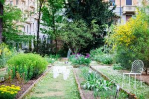 brera botanical garden milan guided tour walking tour